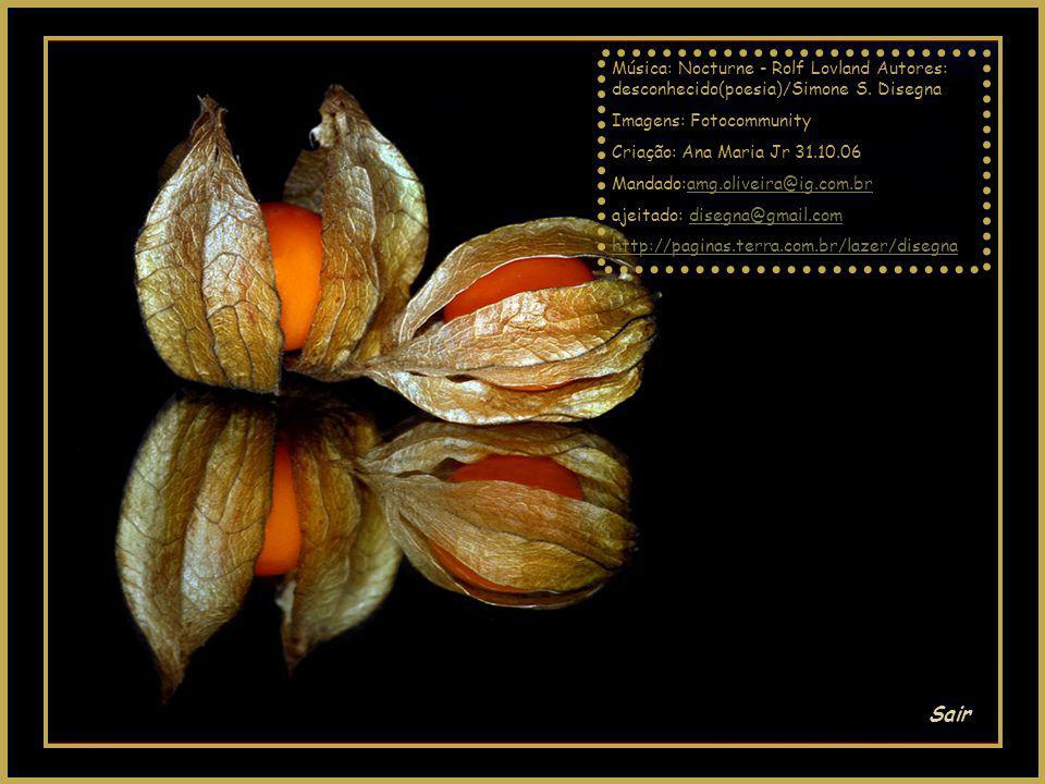 Música: Nocturne - Rolf Lovland Autores: desconhecido(poesia)/Simone S