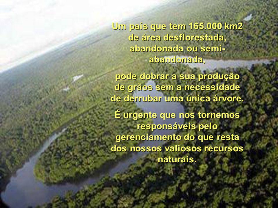 Um país que tem 165.000 km2 de área desflorestada, abandonada ou semi-abandonada,