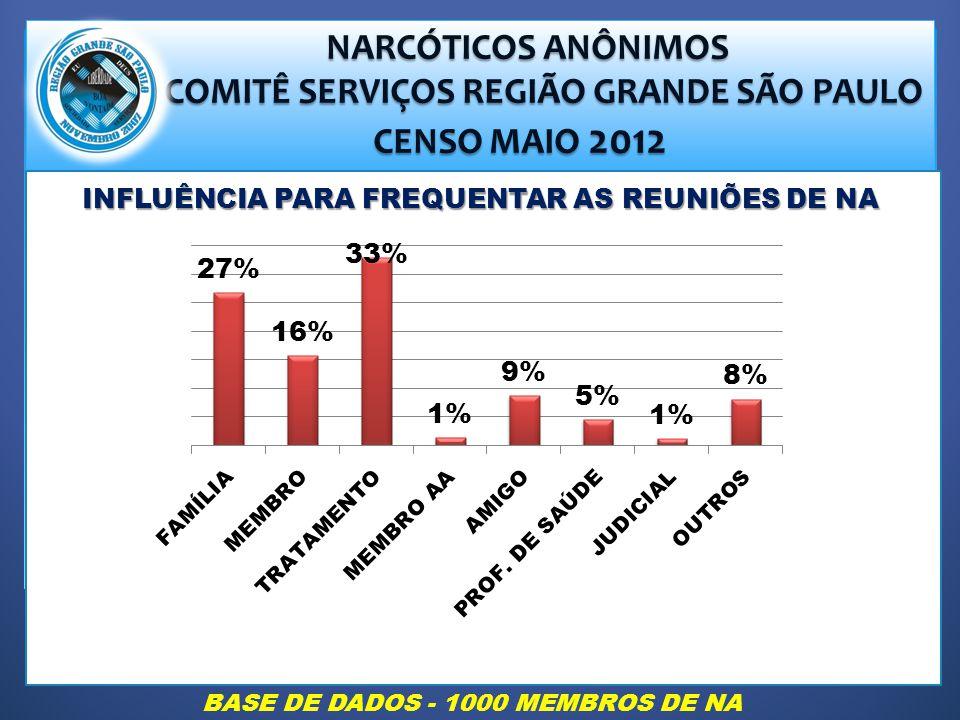 COMITÊ SERVIÇOS REGIÃO GRANDE SÃO PAULO CENSO MAIO 2012