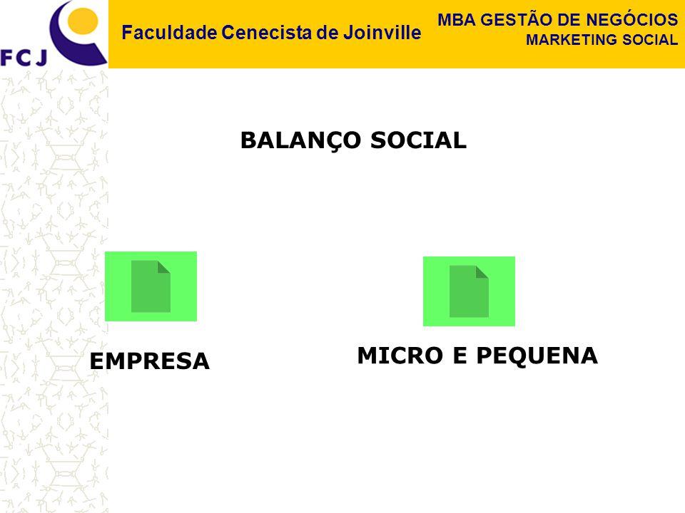 BALANÇO SOCIAL MICRO E PEQUENA EMPRESA