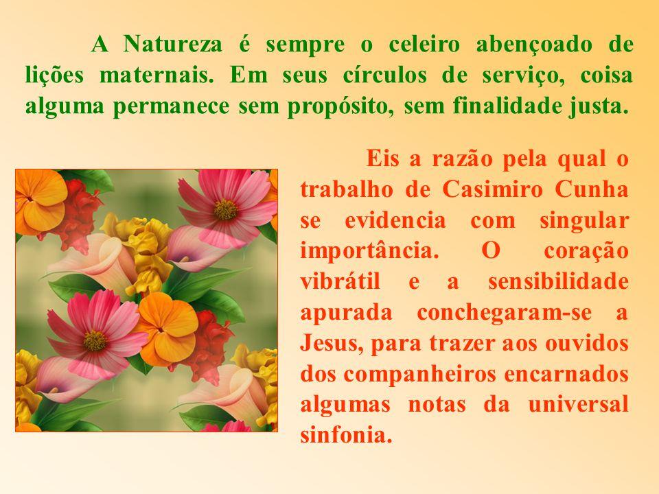 A Natureza é sempre o celeiro abençoado de lições maternais