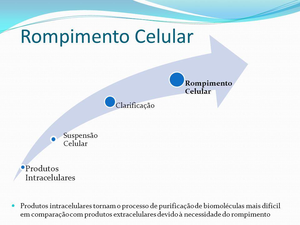 Rompimento Celular Produtos Intracelulares Rompimento Celular
