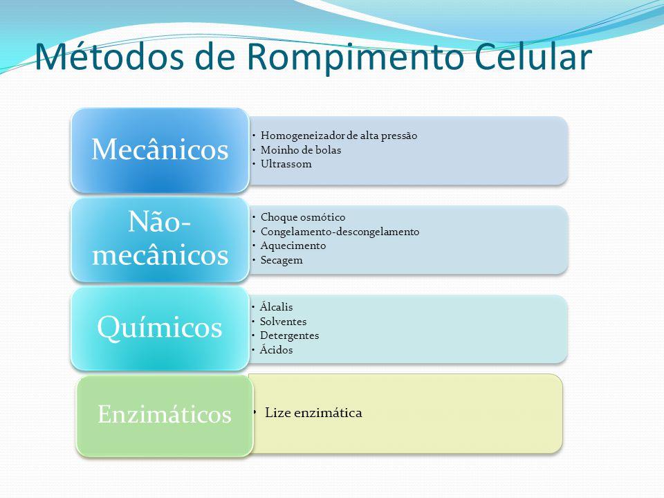 Métodos de Rompimento Celular