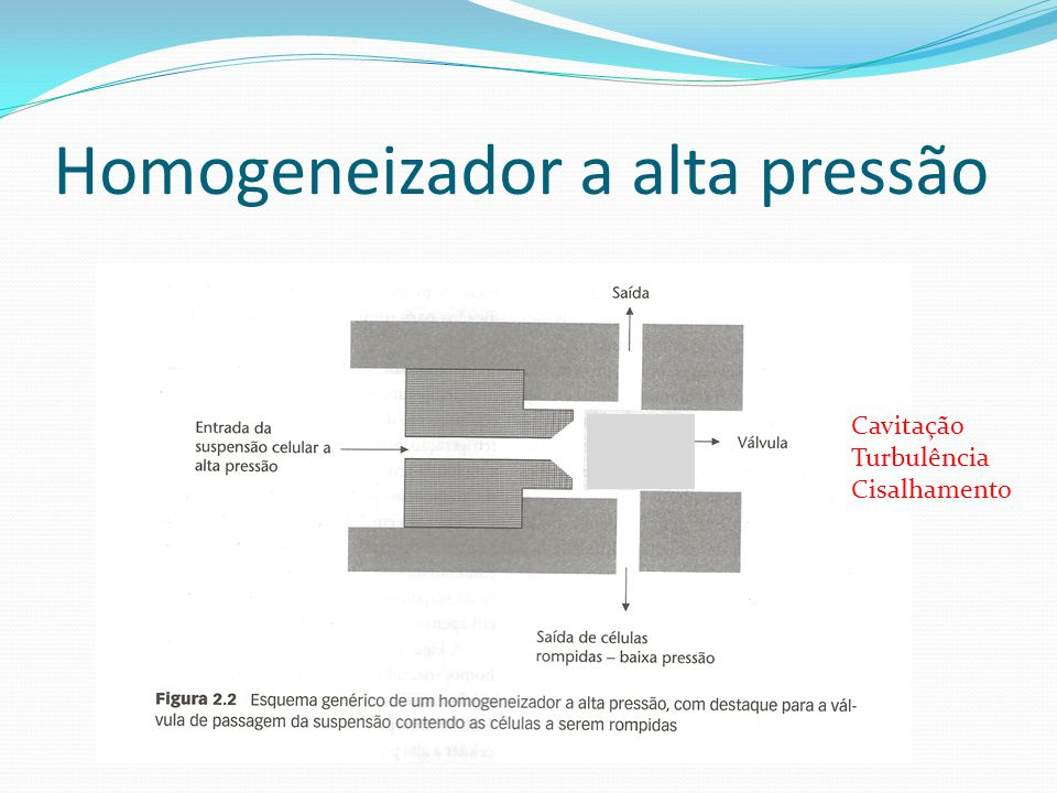 Homogeneizador a alta pressão