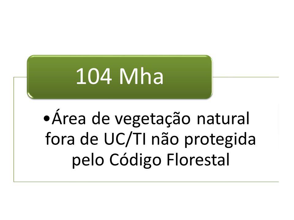 Área de vegetação natural fora de UC/TI não protegida pelo Código Florestal