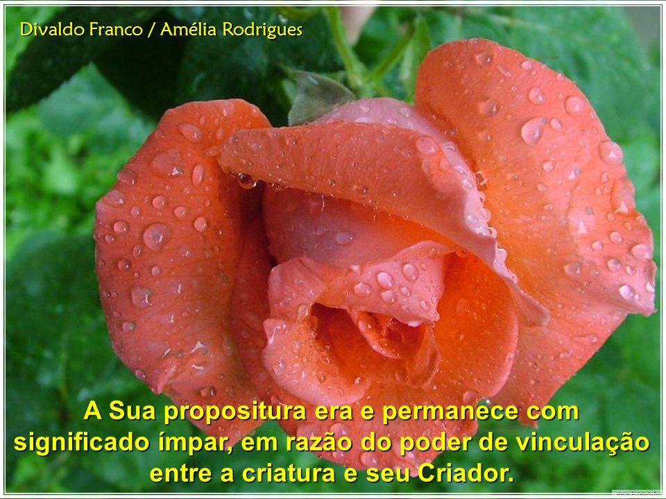 Divaldo Franco / Amélia Rodrigues