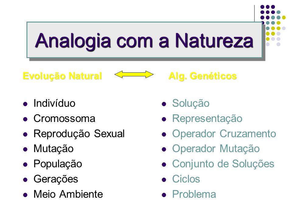Analogia com a Natureza
