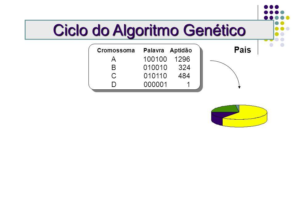 Ciclo do Algoritmo Genético