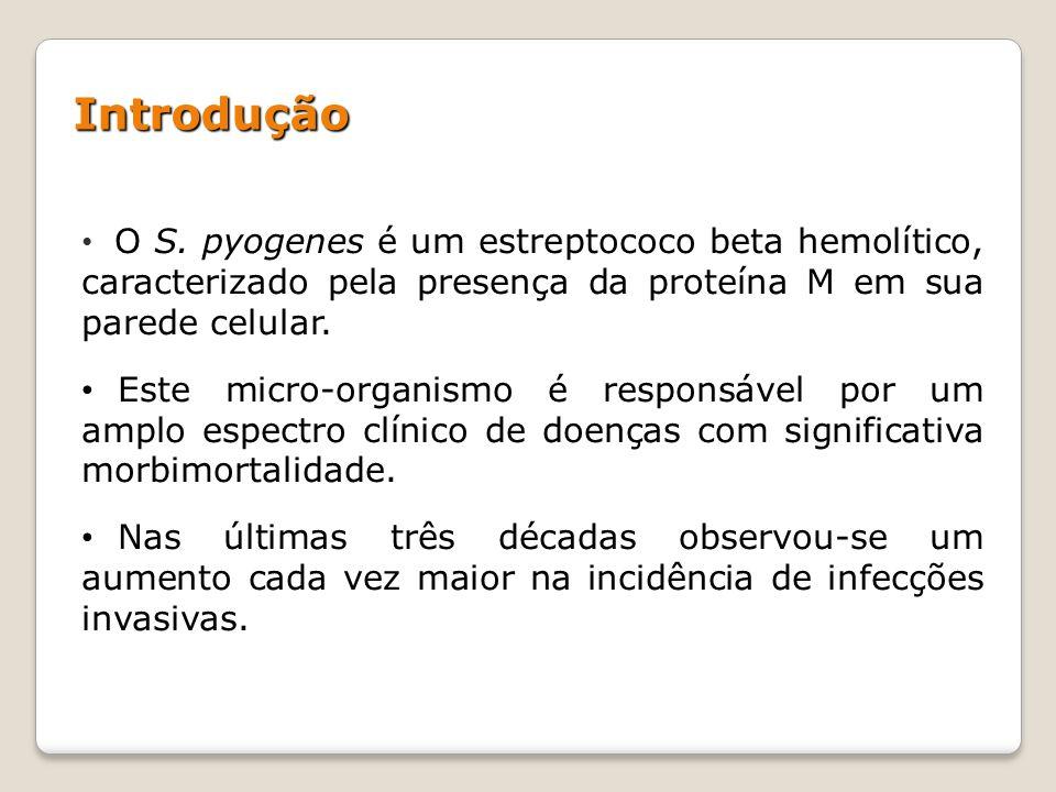 Introdução O S. pyogenes é um estreptococo beta hemolítico, caracterizado pela presença da proteína M em sua parede celular.