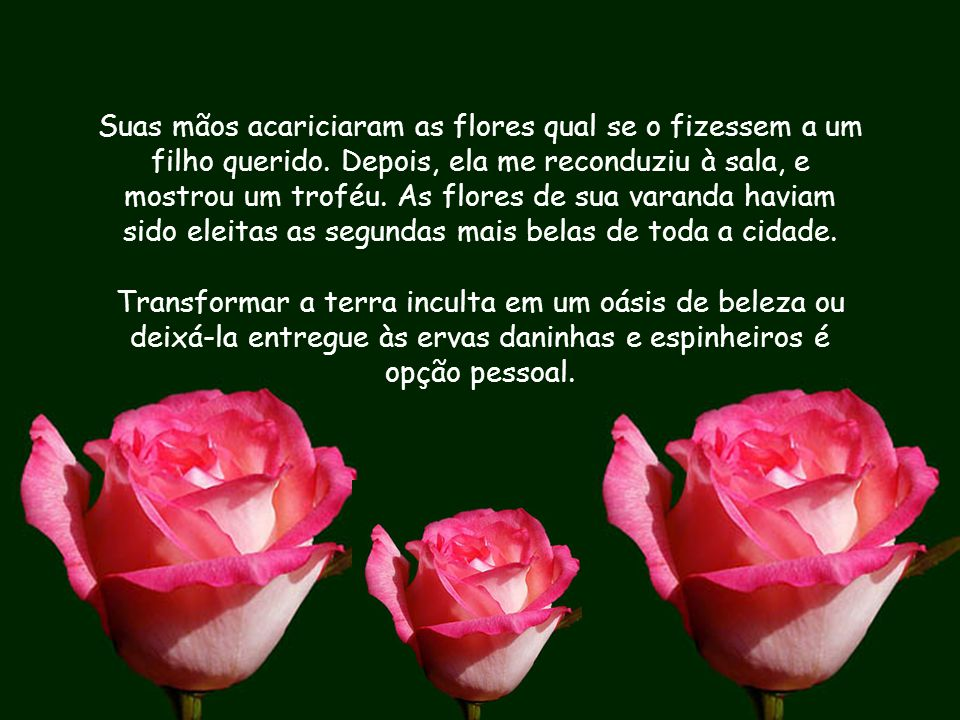 Suas mãos acariciaram as flores qual se o fizessem a um filho querido