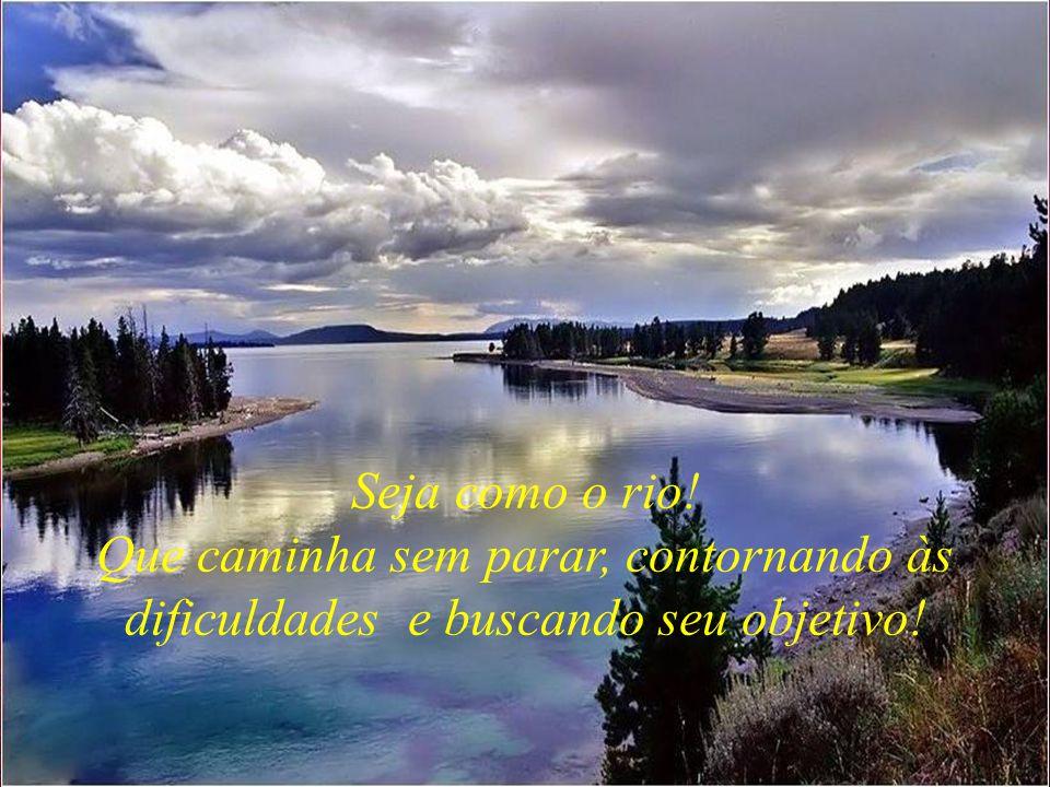 Seja como o rio! Que caminha sem parar, contornando às dificuldades e buscando seu objetivo!