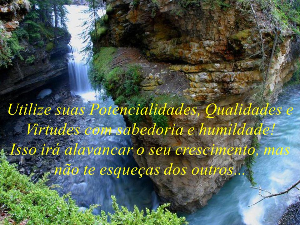 Utilize suas Potencialidades, Qualidades e Virtudes com sabedoria e humildade!