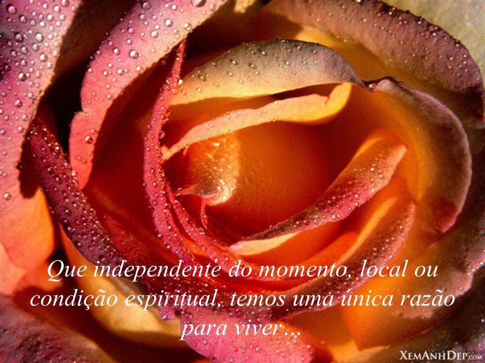 Que independente do momento, local ou condição espiritual, temos uma única razão para viver…