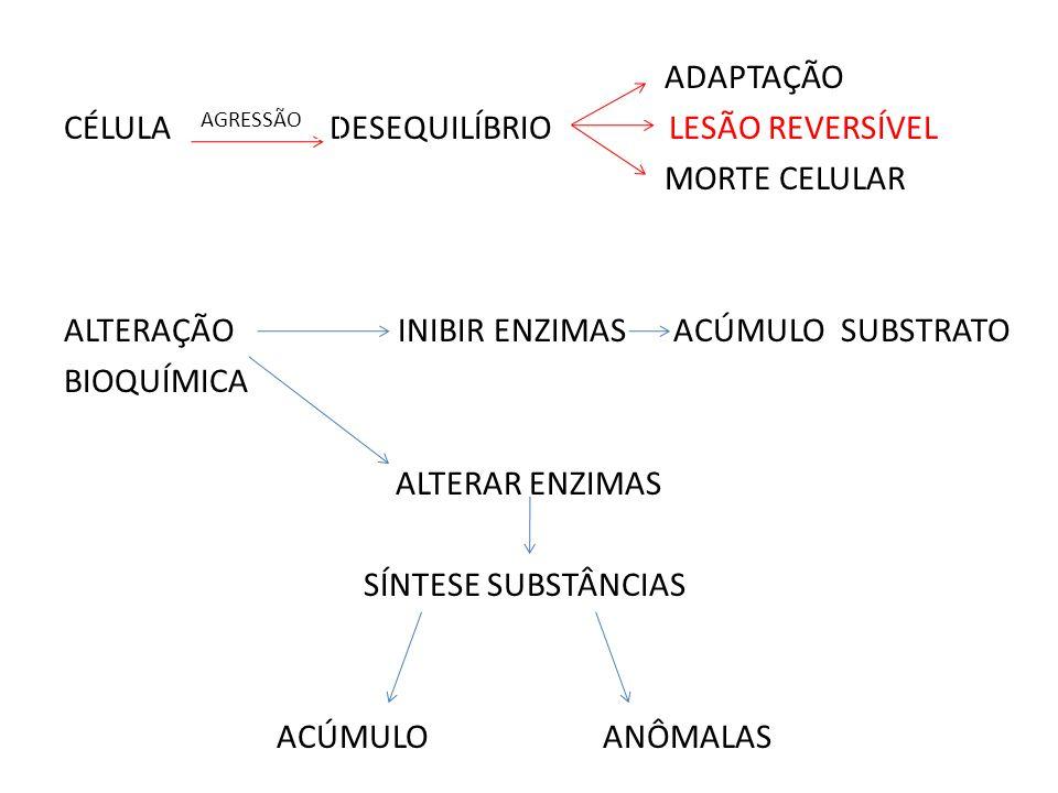 ADAPTAÇÃO CÉLULA DESEQUILÍBRIO LESÃO REVERSÍVEL MORTE CELULAR ALTERAÇÃO INIBIR ENZIMAS ACÚMULO SUBSTRATO BIOQUÍMICA ALTERAR ENZIMAS SÍNTESE SUBSTÂNCIAS ACÚMULO ANÔMALAS
