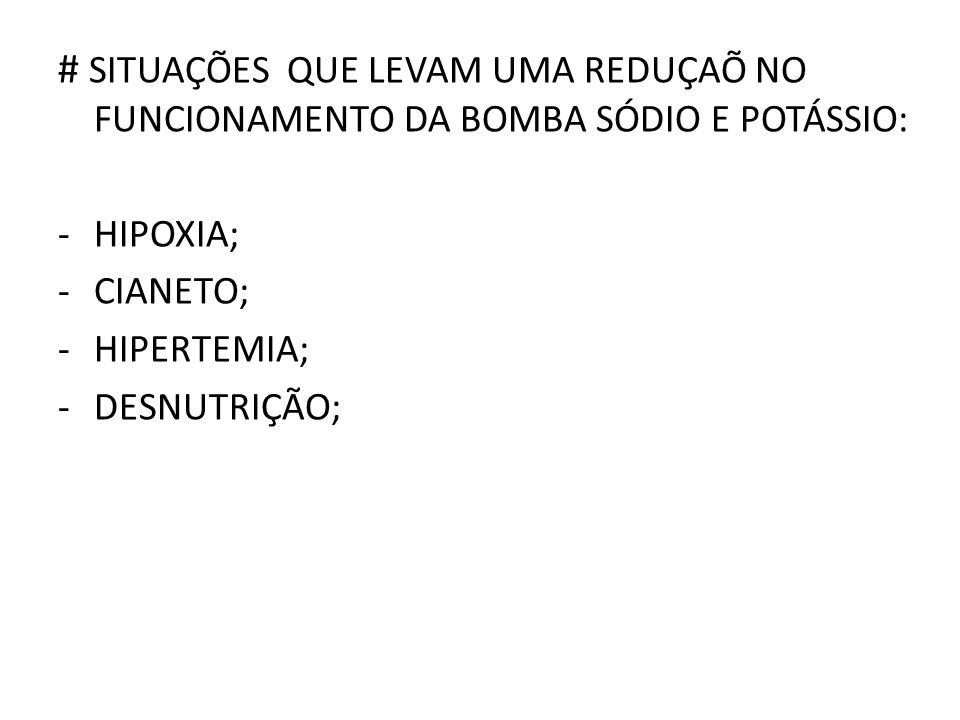# SITUAÇÕES QUE LEVAM UMA REDUÇAÕ NO FUNCIONAMENTO DA BOMBA SÓDIO E POTÁSSIO: