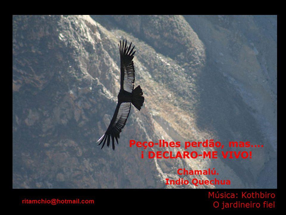 Peço-lhes perdão, mas…. ¡ DECLARO-ME VIVO! Chamalú. Indio Quechua