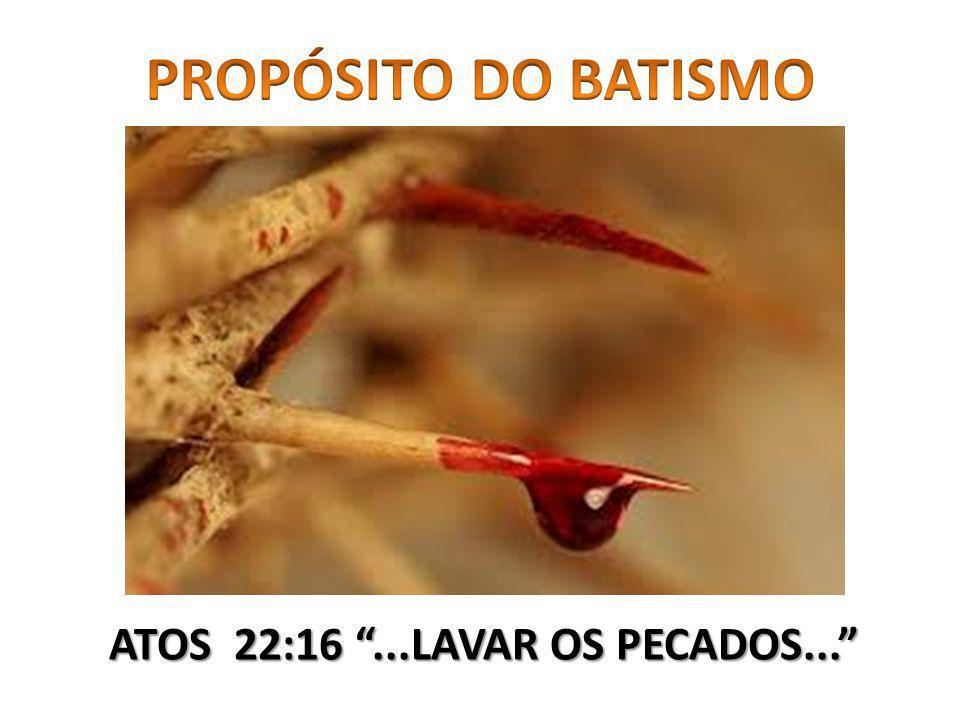 ATOS 22:16 ...LAVAR OS PECADOS...