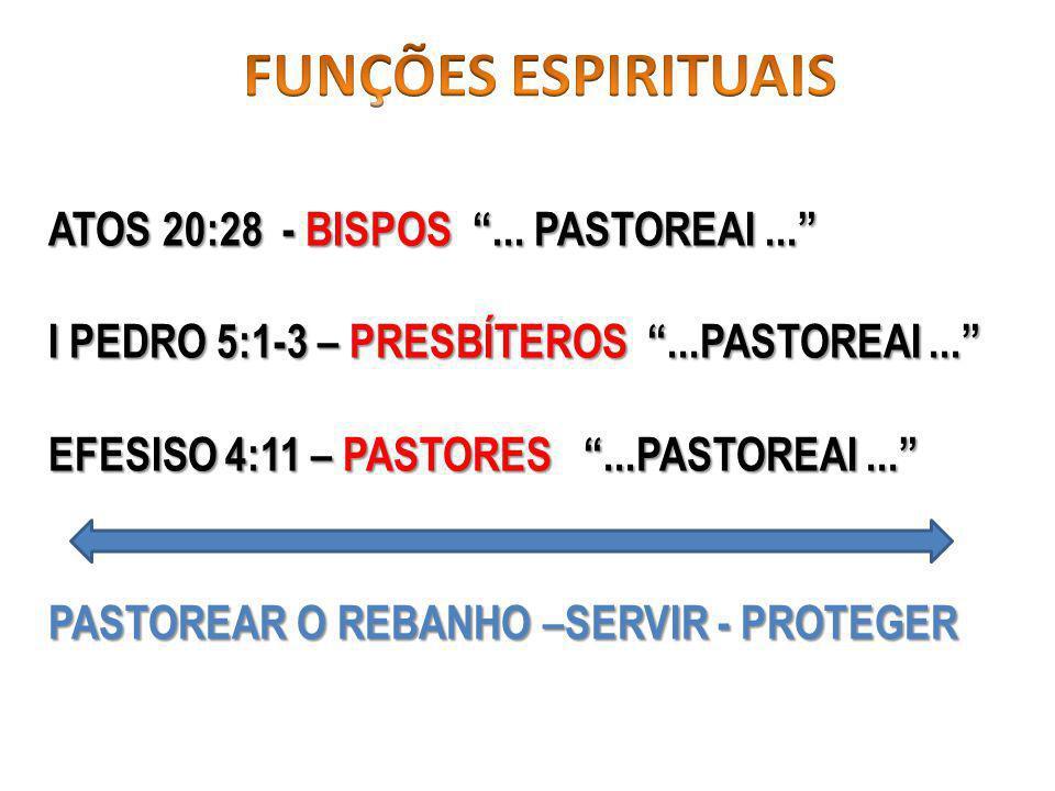 FUNÇÕES ESPIRITUAIS ATOS 20:28 - BISPOS ... PASTOREAI ...
