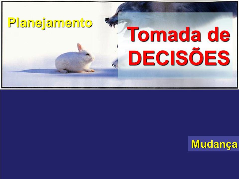 Tomada de DECISÕES Planejamento Mudança ADAPTAÇÃO NO MERCADO