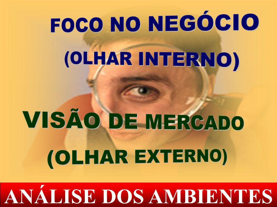 FOCO NO NEGÓCIO VISÃO DE MERCADO ANÁLISE DOS AMBIENTES (OLHAR INTERNO)