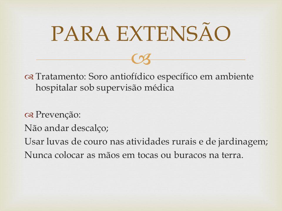 PARA EXTENSÃO Tratamento: Soro antiofídico específico em ambiente hospitalar sob supervisão médica.
