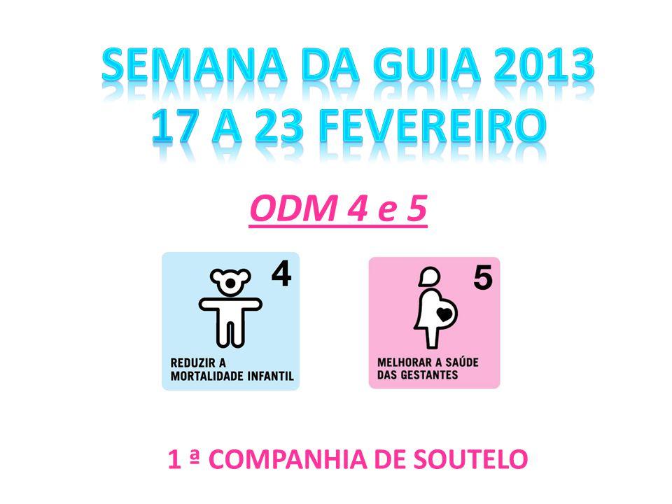 SEMANA DA GUIA 2013 17 a 23 Fevereiro