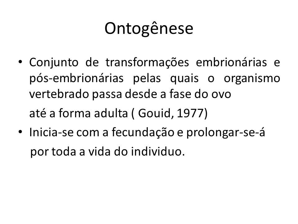 Ontogênese Conjunto de transformações embrionárias e pós-embrionárias pelas quais o organismo vertebrado passa desde a fase do ovo.