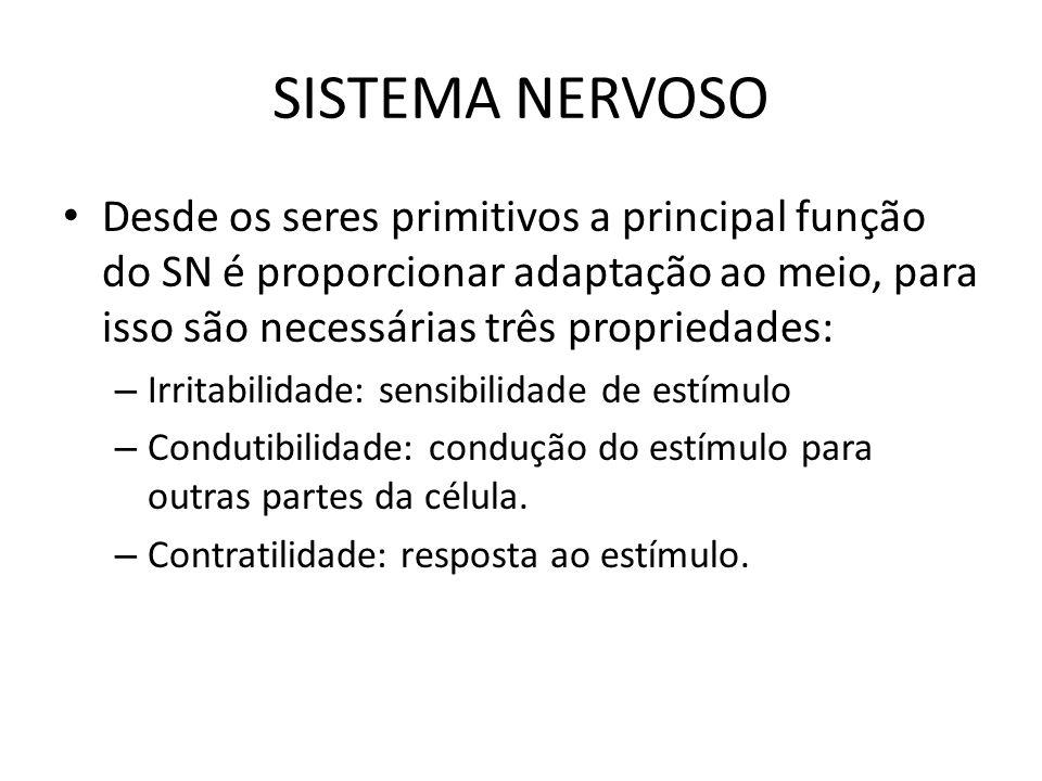 SISTEMA NERVOSO Desde os seres primitivos a principal função do SN é proporcionar adaptação ao meio, para isso são necessárias três propriedades: