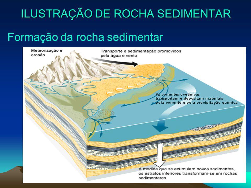 ILUSTRAÇÃO DE ROCHA SEDIMENTAR