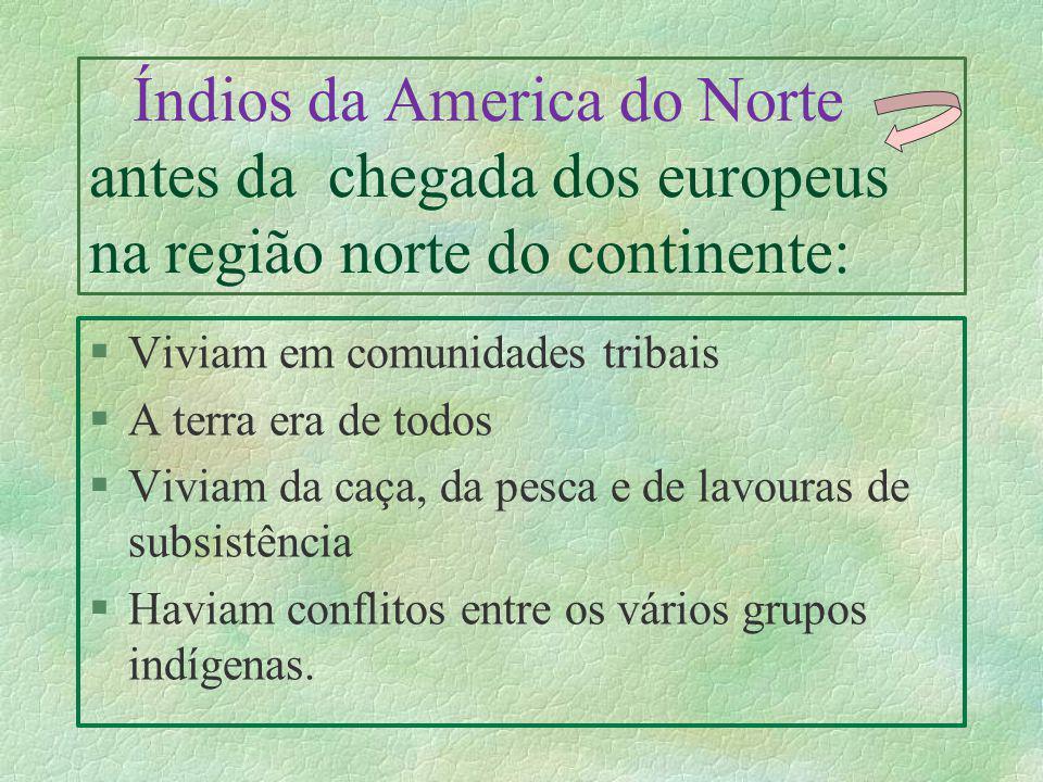 Índios da America do Norte antes da chegada dos europeus na região norte do continente: