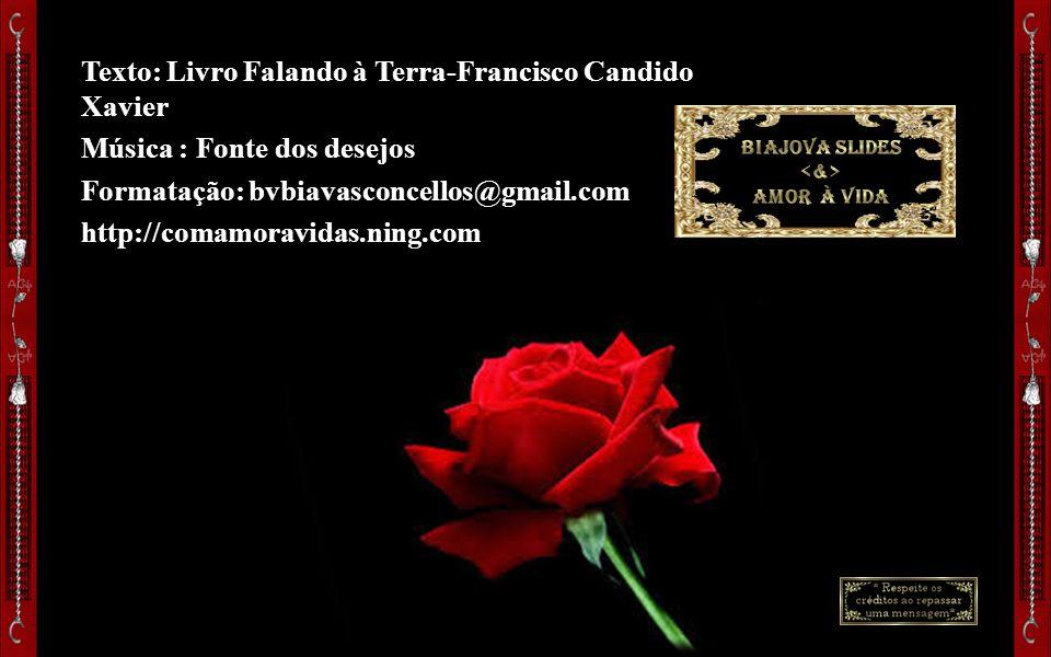 Texto: Livro Falando à Terra-Francisco Candido Xavier