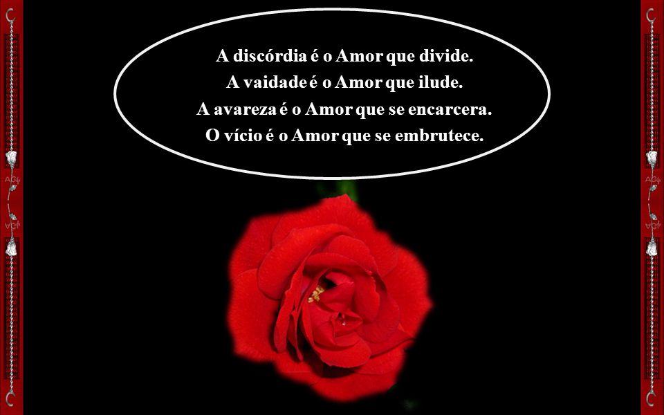A discórdia é o Amor que divide. A vaidade é o Amor que ilude.