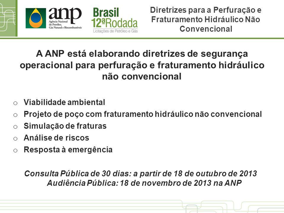 Audiência Pública: 18 de novembro de 2013 na ANP