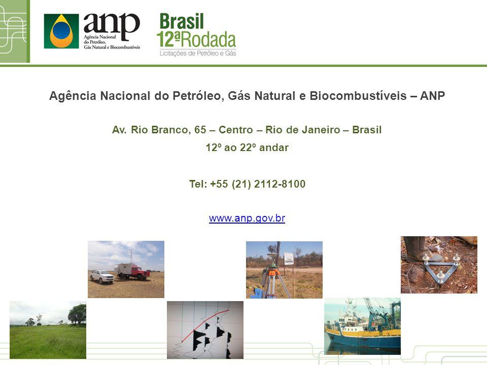 Agência Nacional do Petróleo, Gás Natural e Biocombustíveis – ANP
