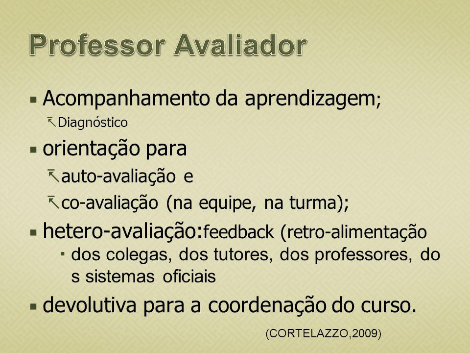 Professor Avaliador Acompanhamento da aprendizagem; orientação para
