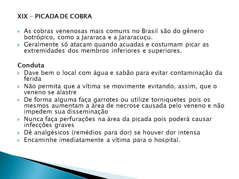 XIX - PICADA DE COBRA As cobras venenosas mais comuns no Brasil são do gênero botrópico, como a Jararaca e a Jararacuçu.