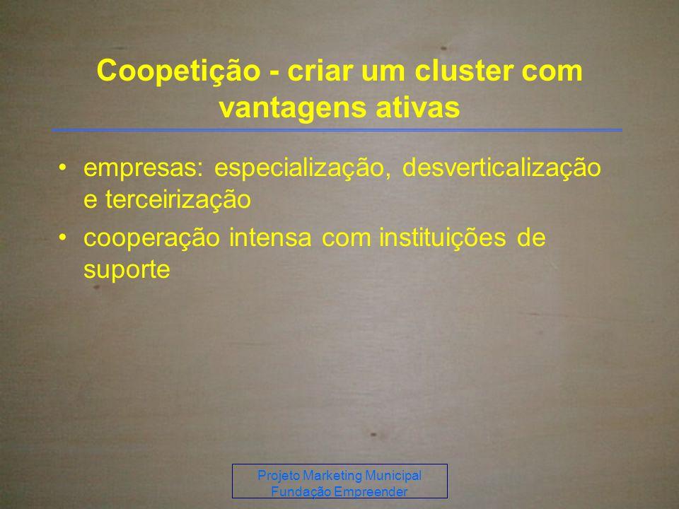 Coopetição - criar um cluster com vantagens ativas