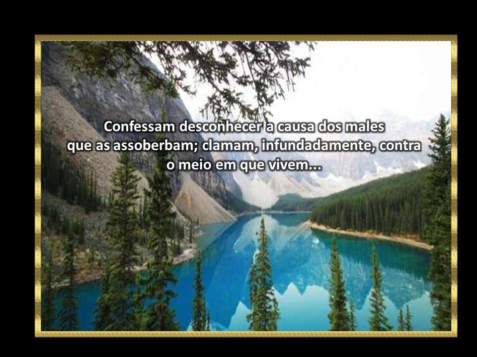 Confessam desconhecer a causa dos males que as assoberbam; clamam, infundadamente, contra o meio em que vivem...