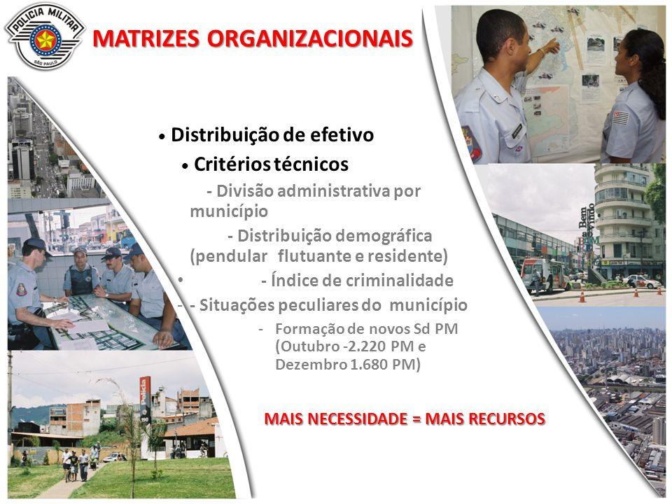 MATRIZES ORGANIZACIONAIS