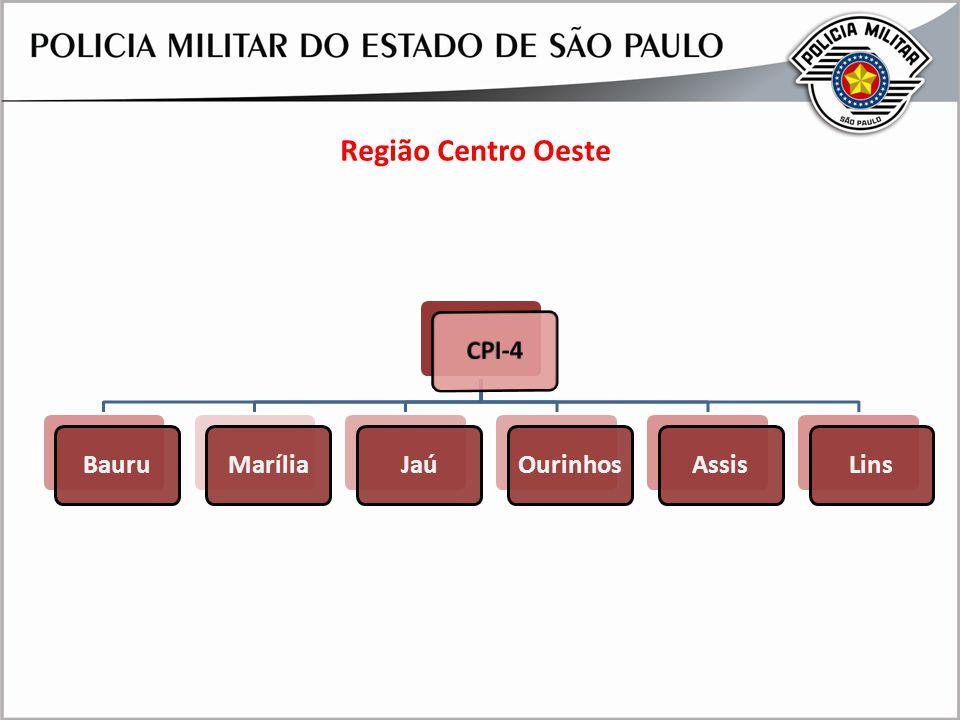 Região Centro Oeste APRESENTAÇÃO CMT GERAL FIESP 24AGO09 29