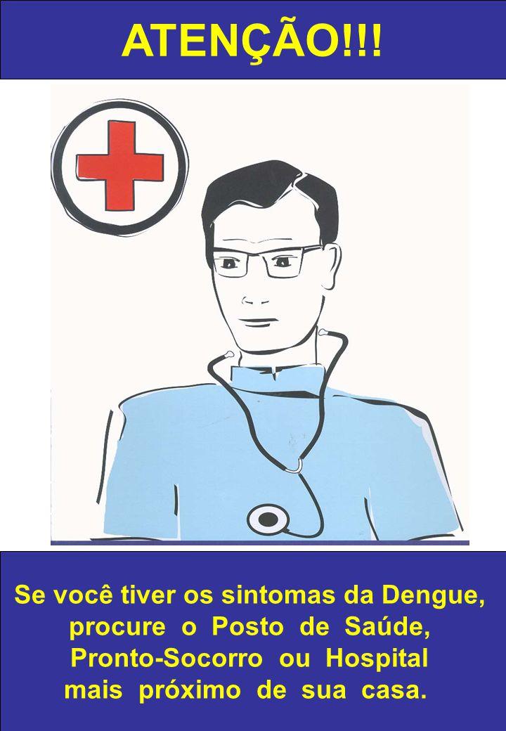ATENÇÃO!!! Se você tiver os sintomas da Dengue,