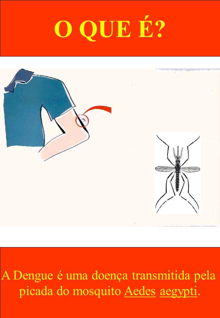 O QUE É A Dengue é uma doença transmitida pela