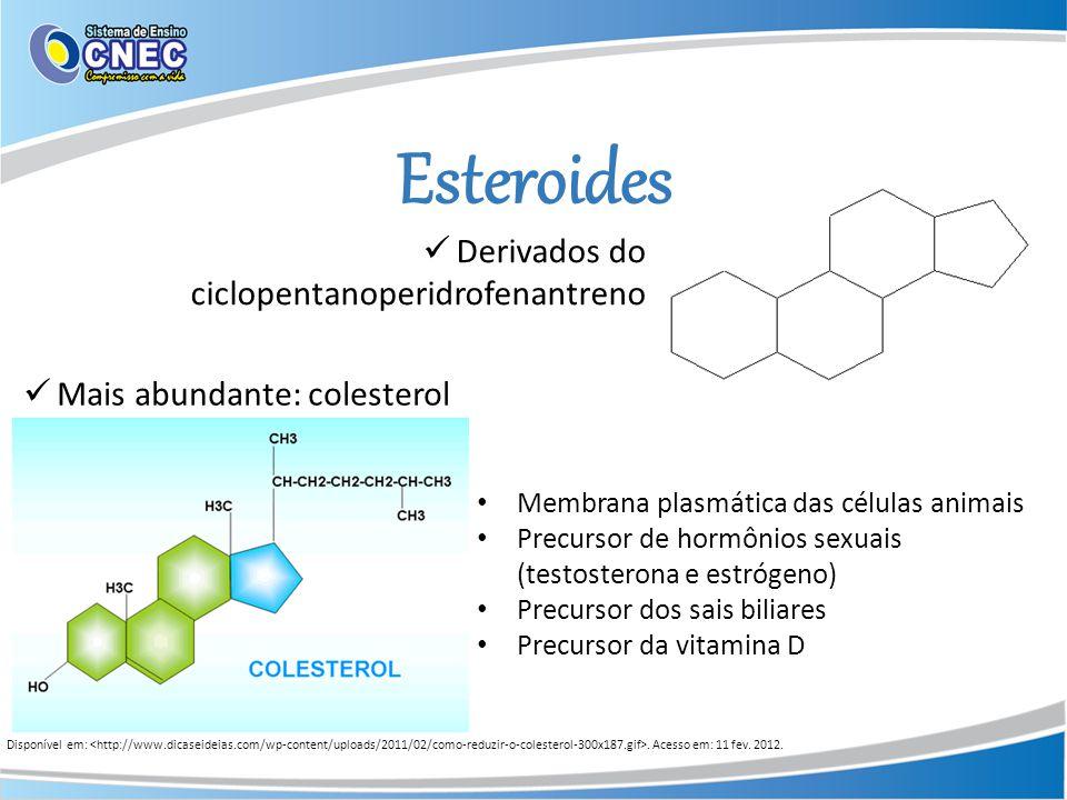 Esteroides Derivados do ciclopentanoperidrofenantreno