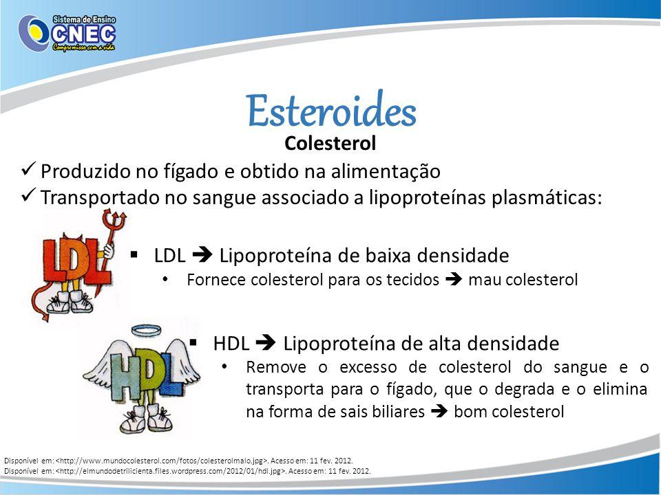 Esteroides Colesterol Produzido no fígado e obtido na alimentação