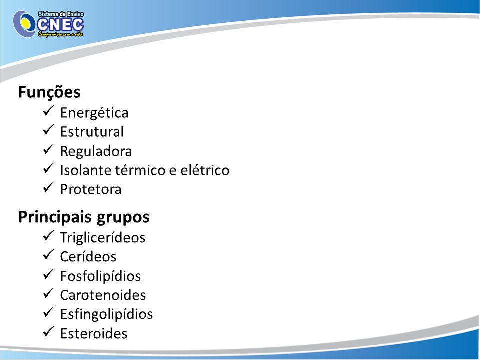 Funções Principais grupos Energética Estrutural Reguladora