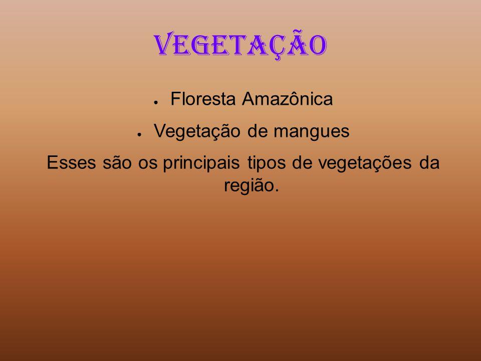 Esses são os principais tipos de vegetações da região.