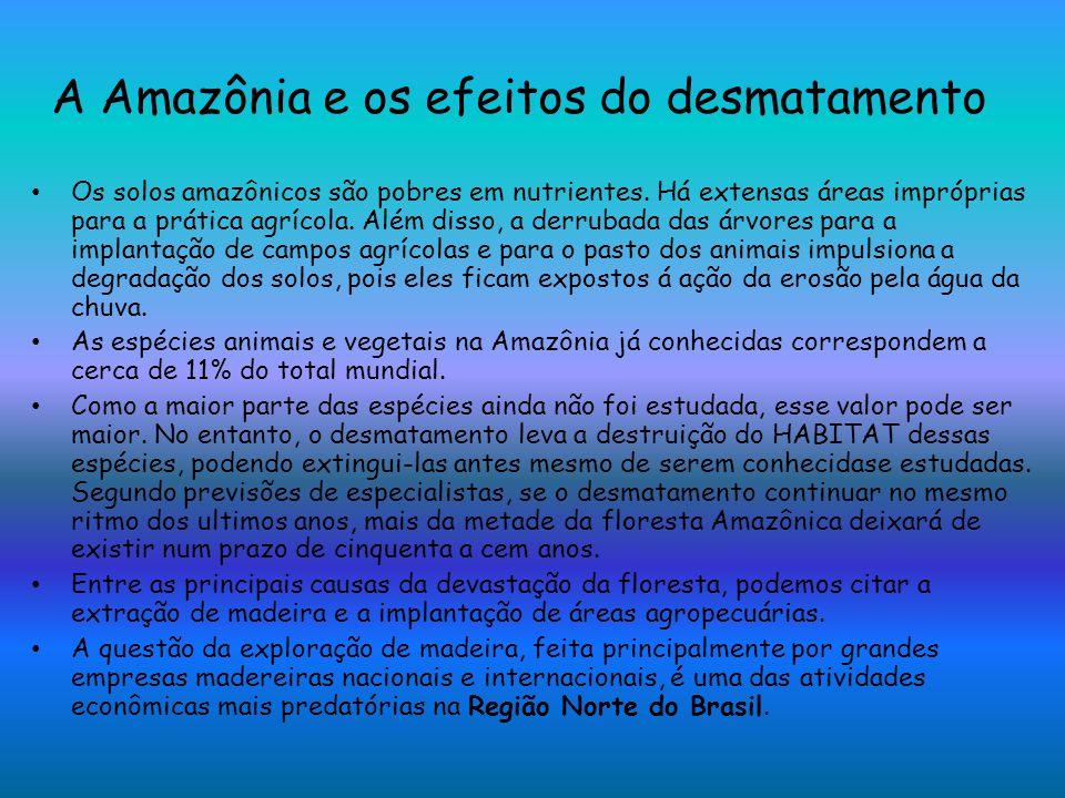 A Amazônia e os efeitos do desmatamento