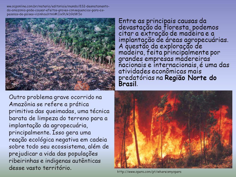 ww.ocponline.com.br/materia/editoriais/mundo/832-desmatamento-da-amazonia-pode-causar-efeitos-graves-consequencias-para-as-pessoas-de-paises-vizinhos.html#.Ux9UkD9dWSo