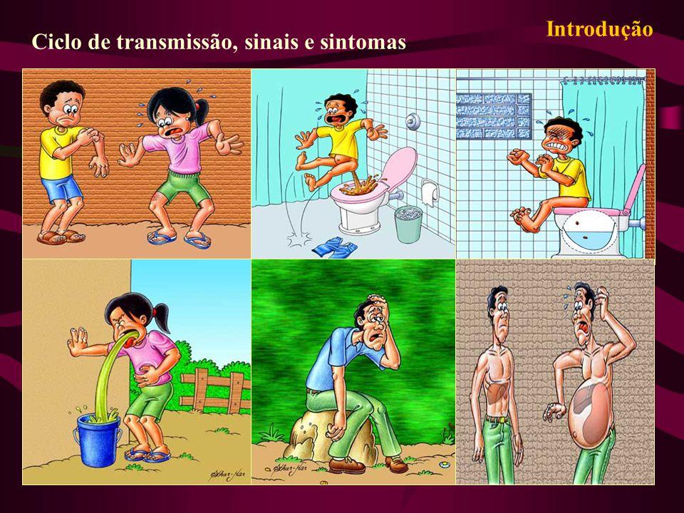 Introdução Ciclo de transmissão, sinais e sintomas