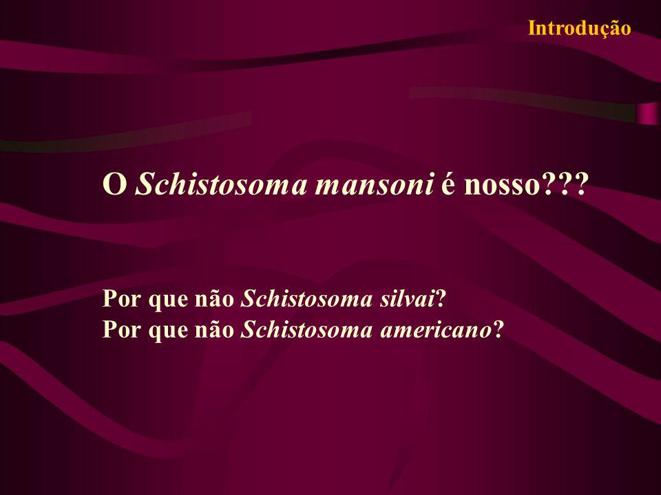 O Schistosoma mansoni é nosso